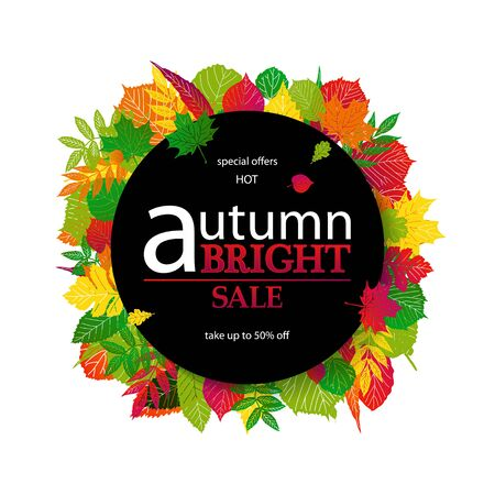Hello Autumn Sale text poster of September leaf fall or autumnal foliage of maple, oak acorn and elm for shopping sale design and frame leaflet or web banner. On a white background.