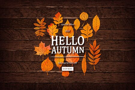 Vector autumn sale lettering label. Banner with hand drawn typography and leaves on a wooden background