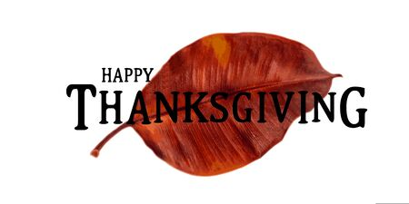 Beautiful Thanksgiving greeting card with watercolor leaf and inscription. Vector illustration
