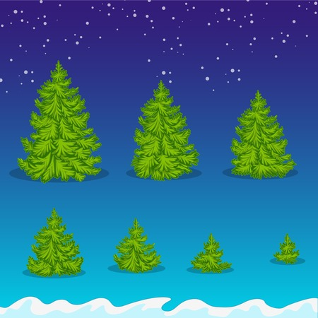 the sizes: Christmas trees of various sizes