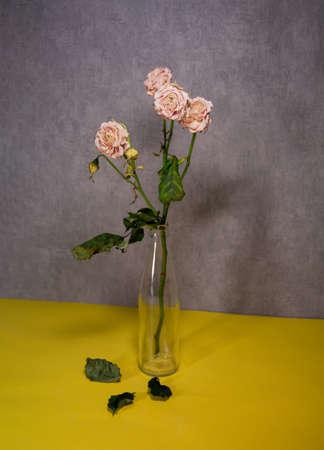 Dried roses in a glass bottle. Fallen leaves below