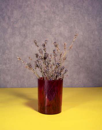 Dried natural flower in a plastic vase. 版權商用圖片
