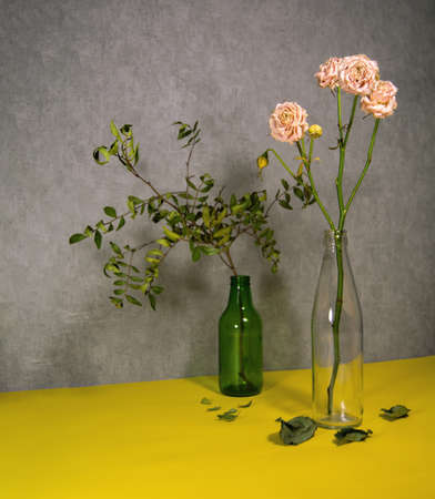 Dried roses and branch of pistachio in a glass bottle. Fallen leaves below