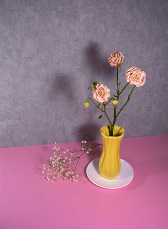 Dried roses in a yellow vase on a white saucer. 版權商用圖片