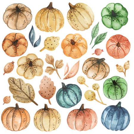 Watercolor Pumpkins clipart, colorful pumpkins set, thanksgiving, autumn harvest clipart, hand drawn pumpkins and plants illustration isolated