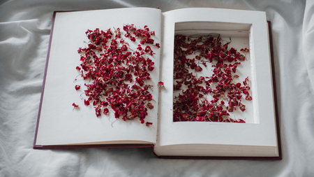 Vintage books with dried red flowers on a white bed. Concept Nostalgic and remembrance vintage background.