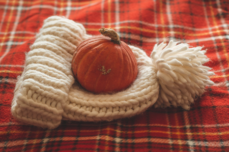 Happy Thanksgiving concept.Beautiful pumpkin, hat, on plaid red. Seasons greetings. Cozy autumn