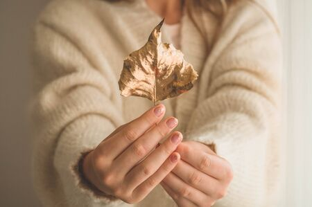 A woman holds in her hands a beautiful fall gold leaf.