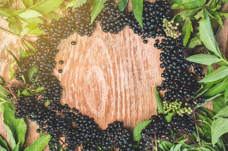 Clusters fruit black elderberry on a wooden background (Sambucus nigra). Elder, black elder. European black elderberry background