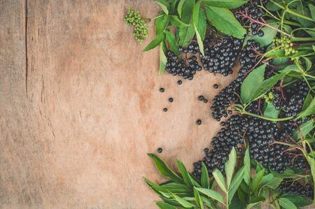 Clusters fruit black elderberry on a wooden background (Sambucus nigra). Elder, black elder. European black elderberry background