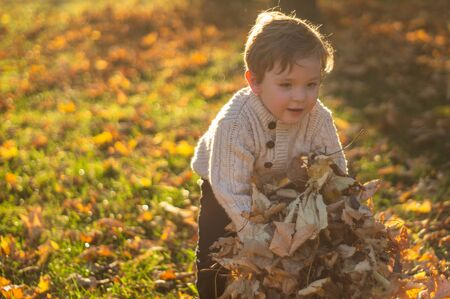Happy little child baby boy laughing and playing in the autumn on the nature walk outdoors