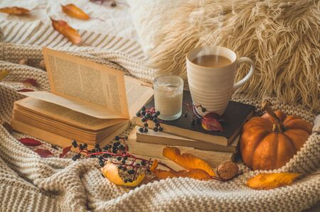 Still life details in home interior of living room. Sweaters and cup of coffee with pumpkins and autumn decor on the books. Read, Rest. Cozy autumn or winter concept.