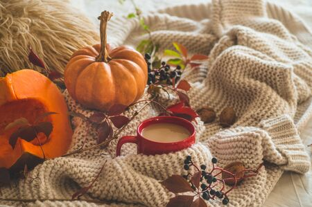 Still life details in home interior of living room. Sweaters and cup of coffee with pumpkins and autumn decor on the books. Read, Rest. Cozy autumn or winter concept. 스톡 콘텐츠 - 132737337