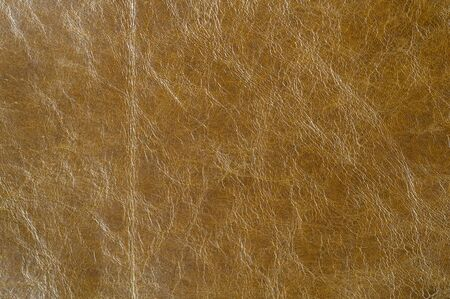 Brown Luxury leather samples close-up. Can be used as background. Industry background.