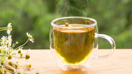 Chamomile flowers and chamomile tea. Herbal chamomile tea. Close-up. Seasonal treatment, alternative medicine remedy.