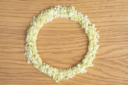 Elderberry flowers in a round frame. Alternative medicine, copy space for text or inscription.