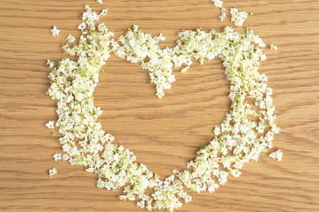 Elderberry flowers in the shape of a heart. Alternative medicine, copy space for text or inscription. Banque d'images