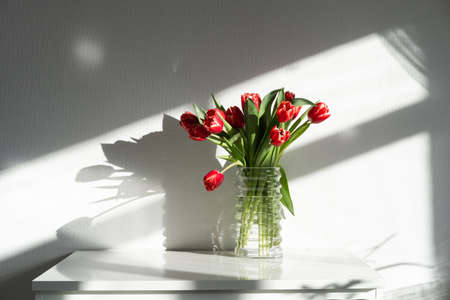 A bouquet of red tulips on a chest of drawers in the living room .. Stock fotó