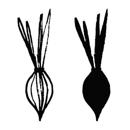 Set onion in doodle style isolated on white background. Vector hand drawn outline and silhouette simple illustration. Eco product. Bow vegetable.