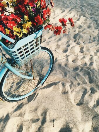 Blue bicycle with a basket of flowers on a sandy beach at sunny day