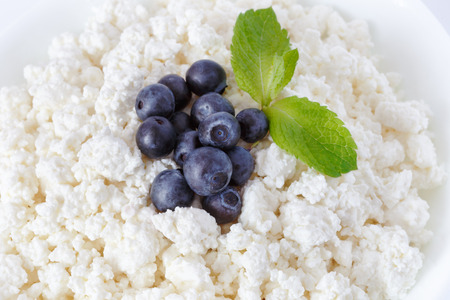 mint leaves: crumbly cottage cheese with blueberries and mint leaves