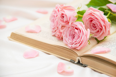 toned: Roses and old book. Toned image