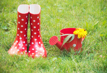 Red boots, watering can and flowers in garden