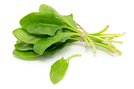 Spinach on a white background Banco de Imagens - 46379005
