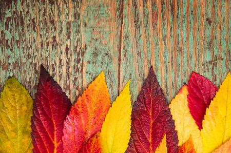 Hojas de otoño sobre fondo de madera con espacio de copia Foto de archivo