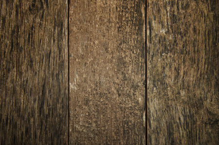wainscot: wooden planks background texture