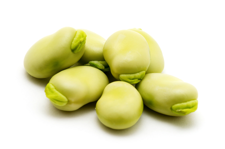 broad: broad beans on white background Stock Photo