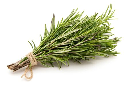 bound: Rosemary bound on a white background