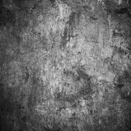 grunge wall: grunge wall