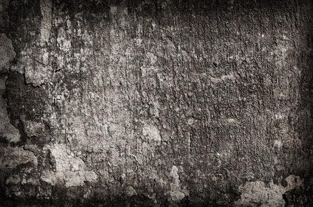 crack: old wall background texture
