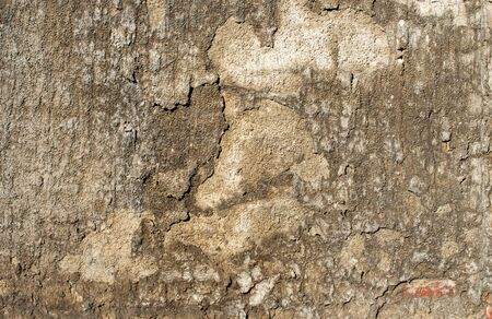 old brown wall background texture