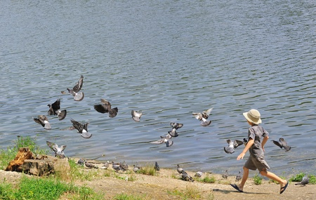 Running boy chasing pigeons on the lake