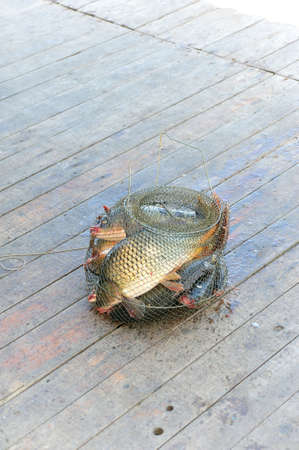 Mesh with the catch is on the fishing jetty.