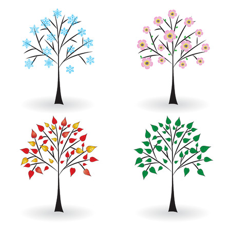 Tree in four seasons  Vector