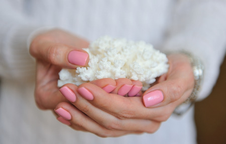 strengthen hand: White sea coral in female nice hands