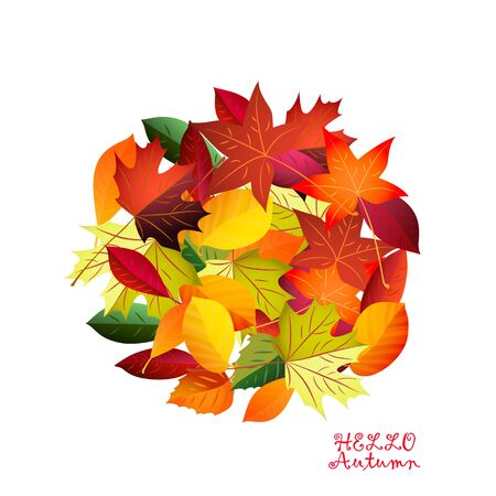 Autumn colorful fallen leaves. Vector background .