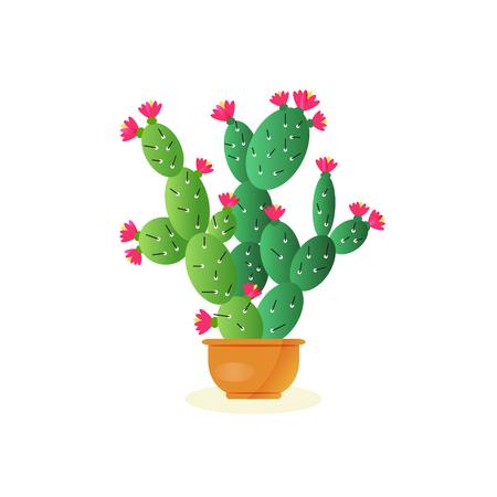 flat: Cactus vector flat icon .
