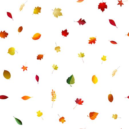 Autumn falling seamless bright background . Vector season patter