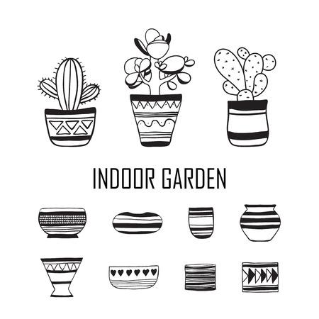 Set of plants and empty flower pots . Vector doodle.