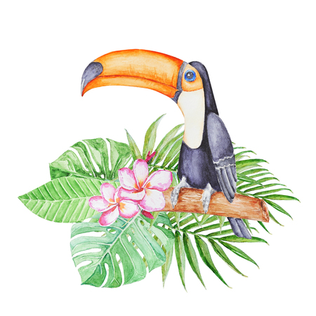 Cute tropical tucan sitting on the  branch in tropical leaves . Hand panted watercolor illustration.