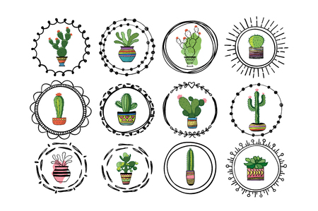 Set of cacti in round borders. Vector illustration