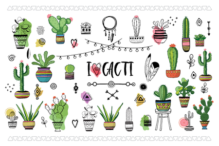 Set of cacti . Vector illustration Иллюстрация
