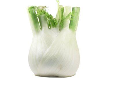 fennel: Hinojo dulce m�s aisladas Blanco