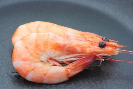 chitin: Two shrimps on a black pan Stock Photo
