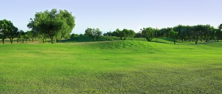 Fragment of panoramic golf-course with olive trees photo