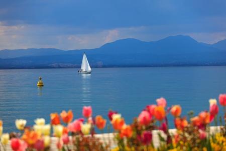 Vela bianca su un lago di Garda e colorate blu, out-of-focus tulipani in primo piano. Colori reali, la modalità Landscape è stata impiegata solo per convertire i file RAW